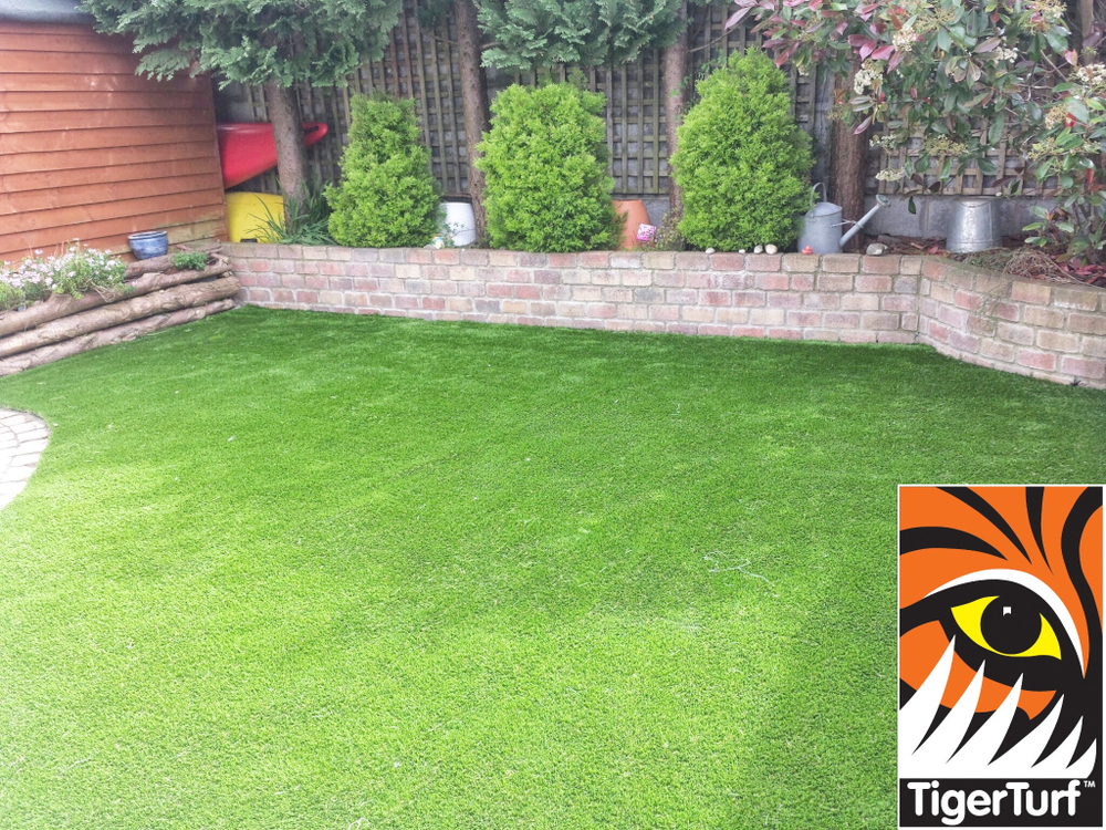 new evergreen curving lawn
