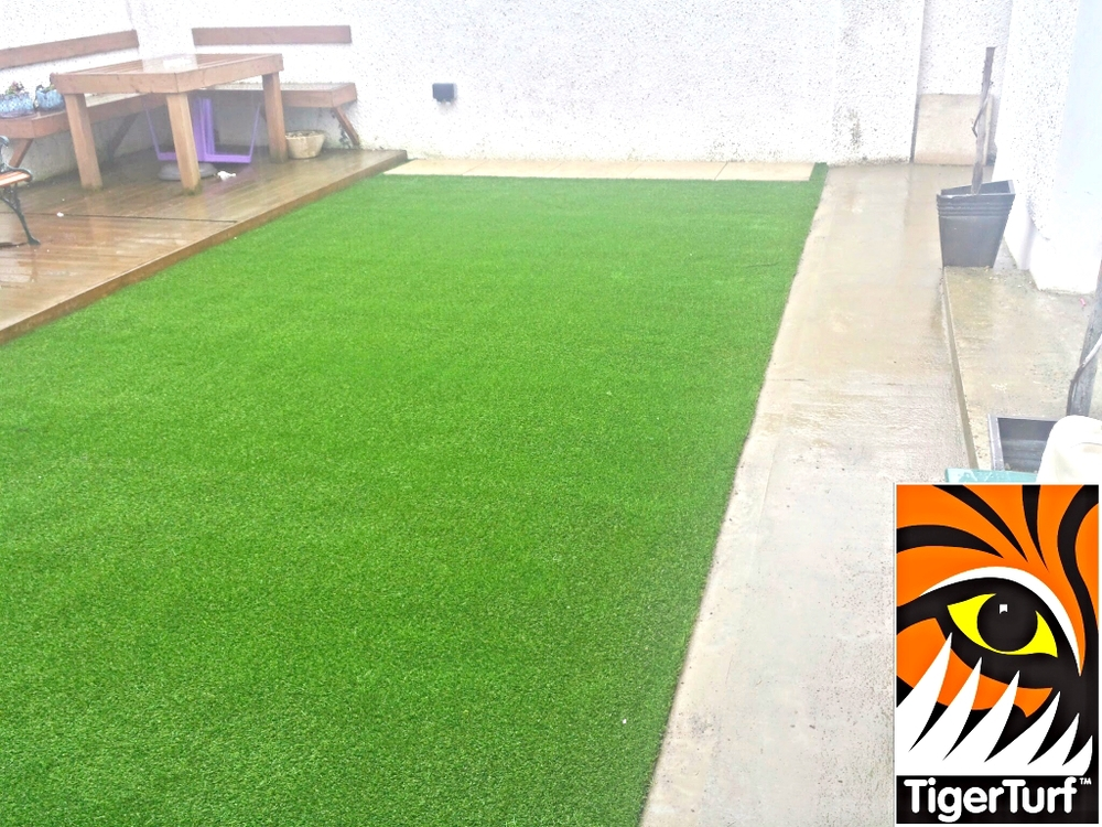 new green play lawn