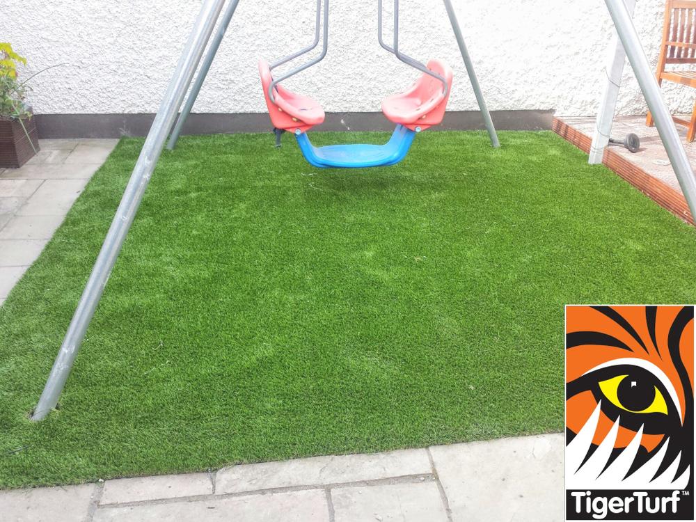 new garden grass