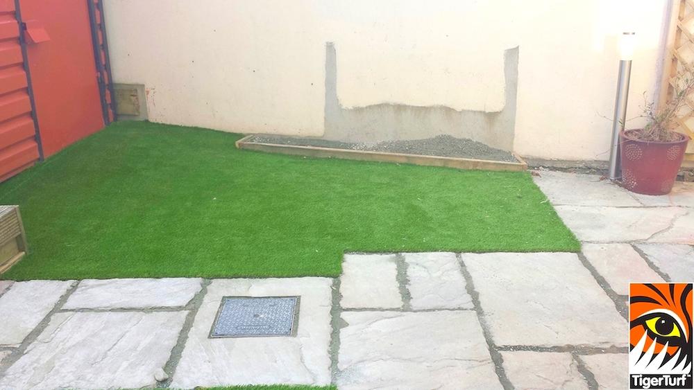 new astro turf lawn