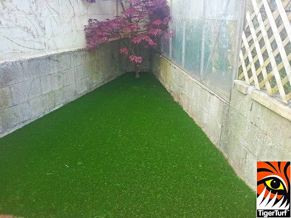 synthetic grass in family garden 6.jpg