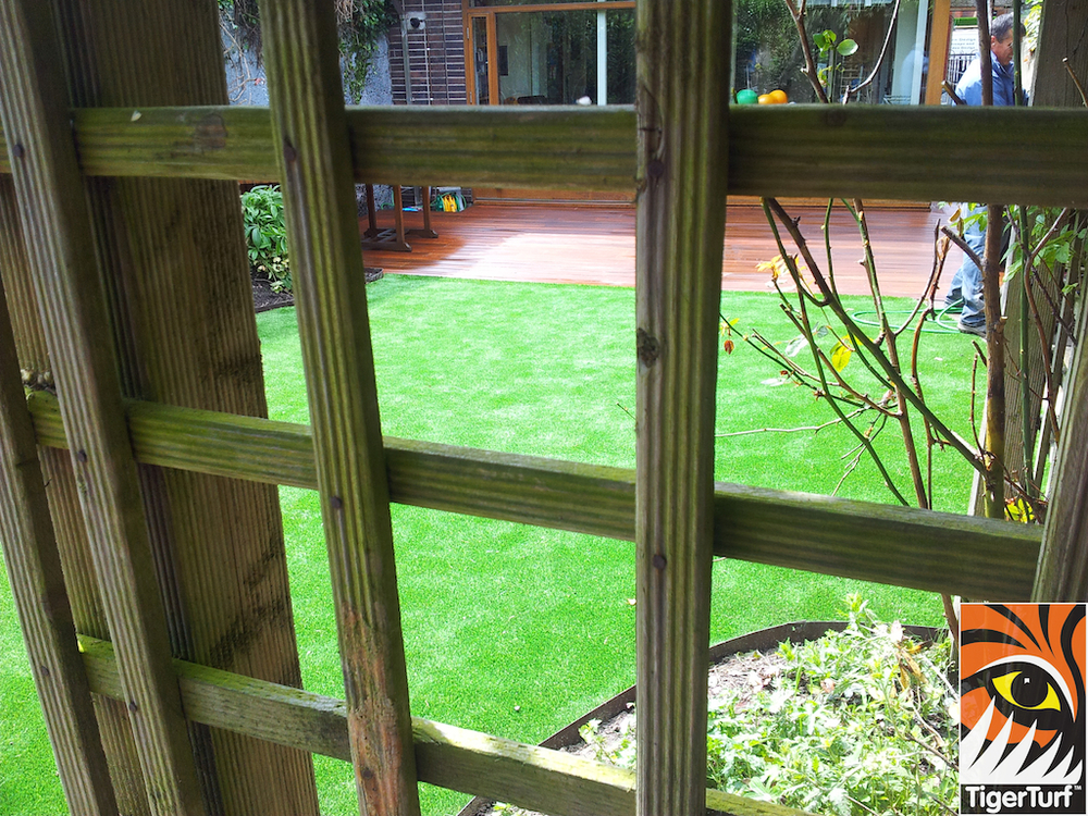 decking and lawn turf 721.jpg