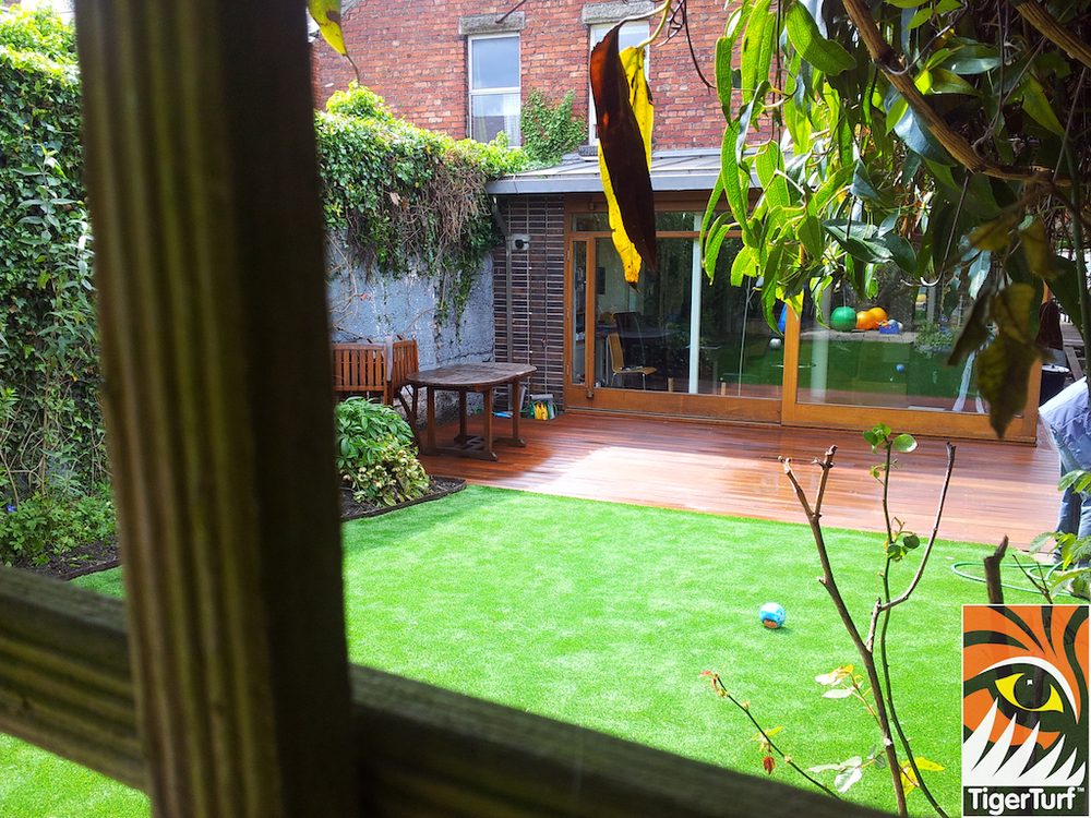 decking and lawn turf 725.jpg