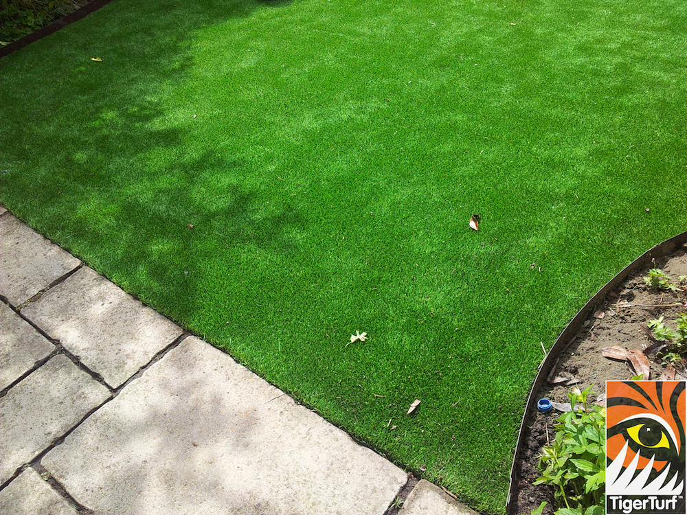 decking and lawn turf 726.jpg