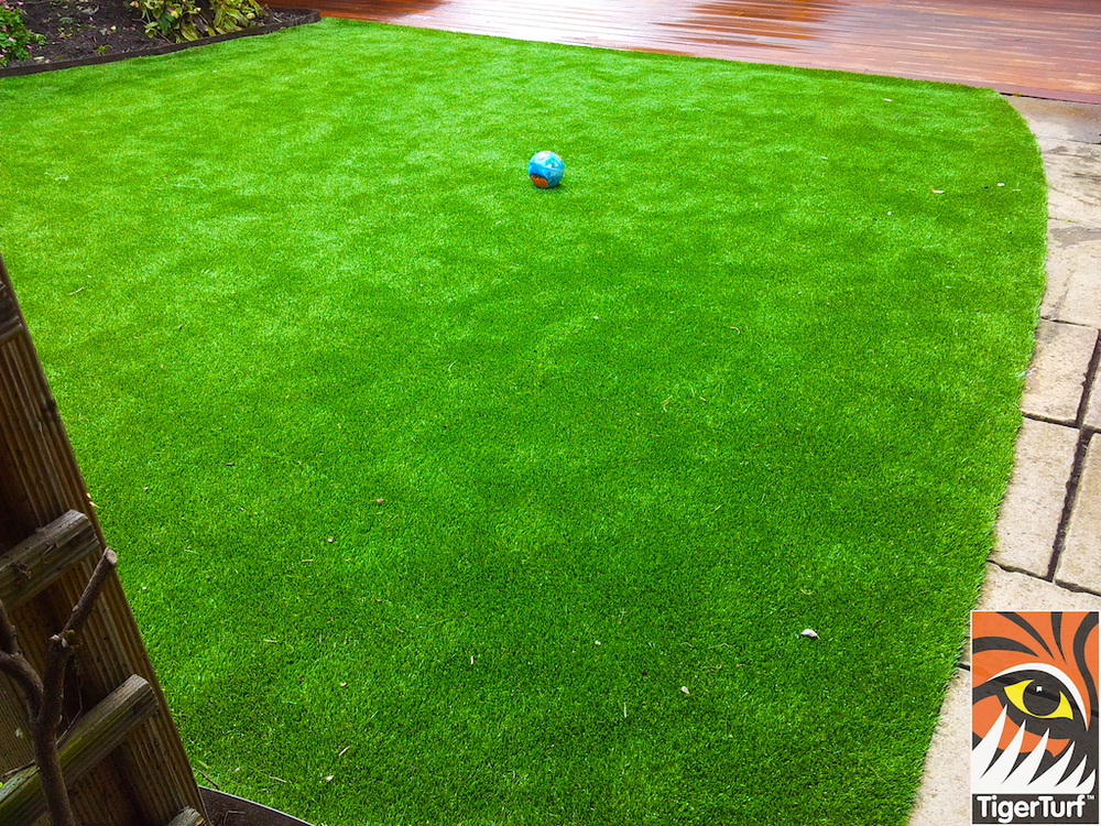 decking and lawn turf 746.jpg