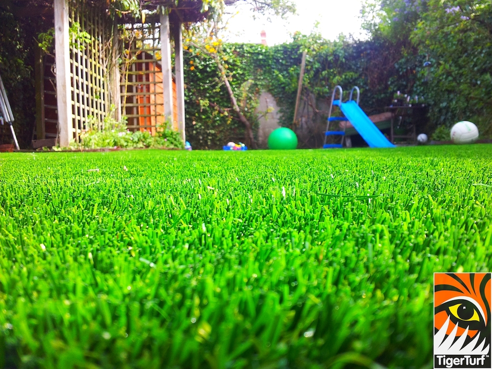 decking and lawn turf 652.jpg