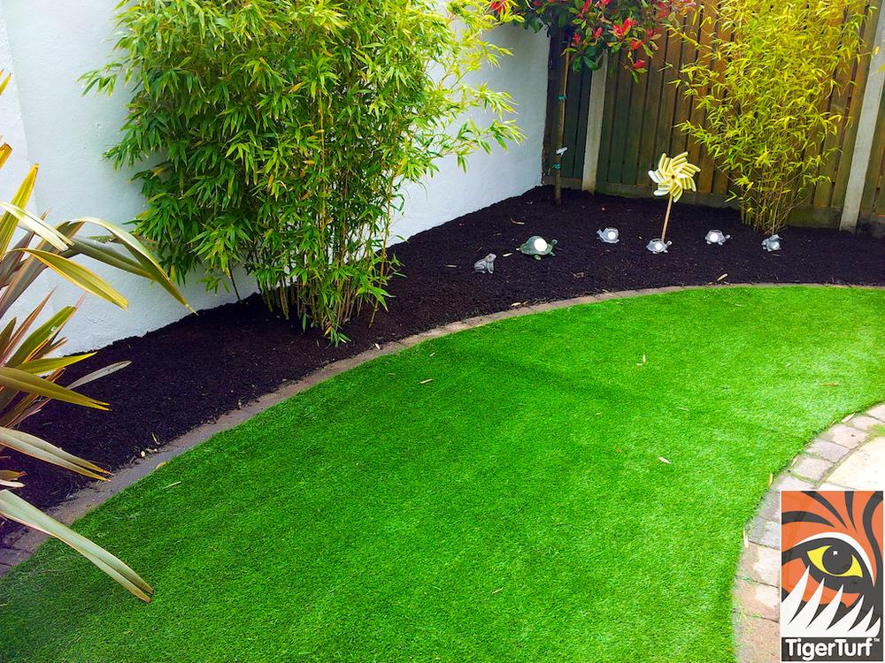 tigerturf lawn turf 843.jpg