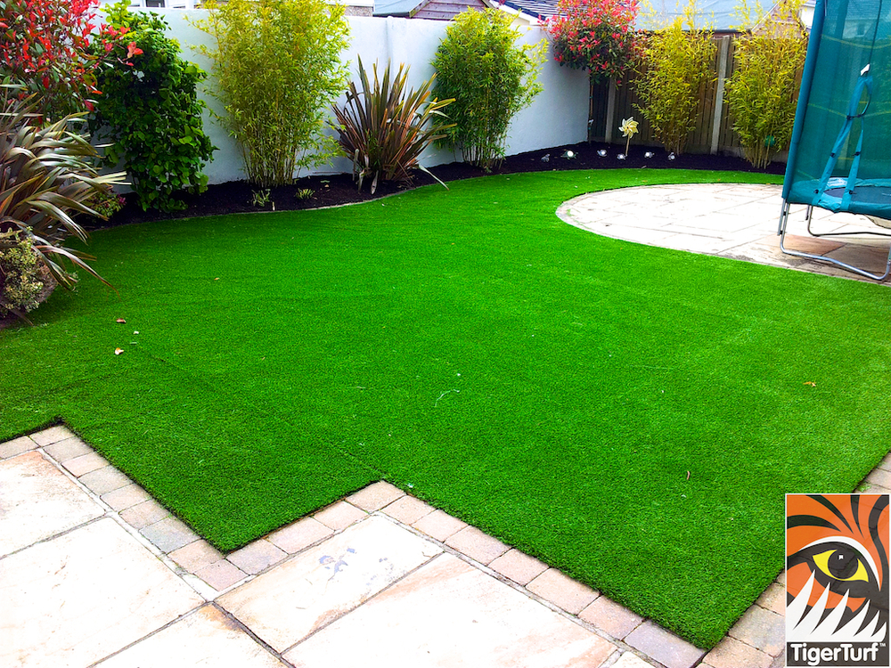 new Synthetic Grass lawn