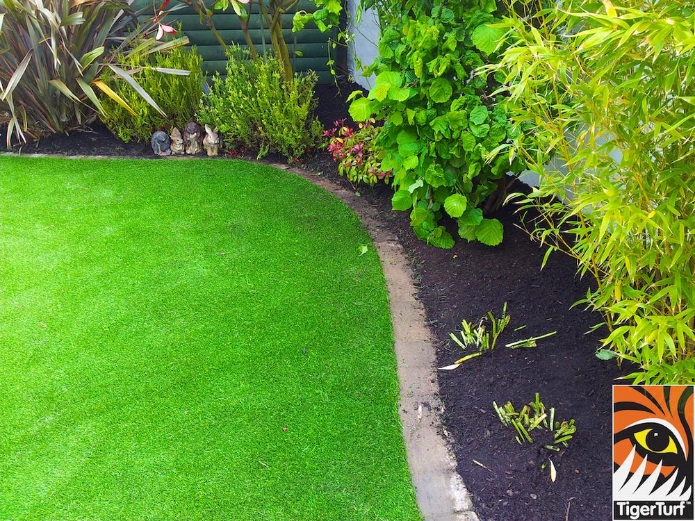 Newly landscaped Garden