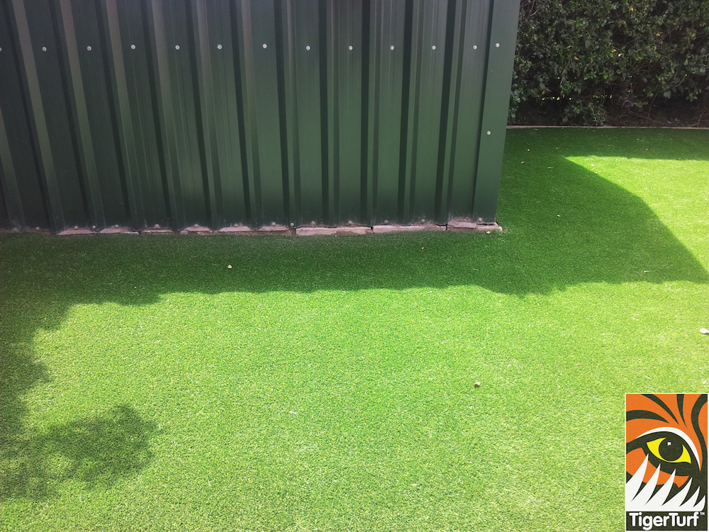 steel shed and synthetic grass