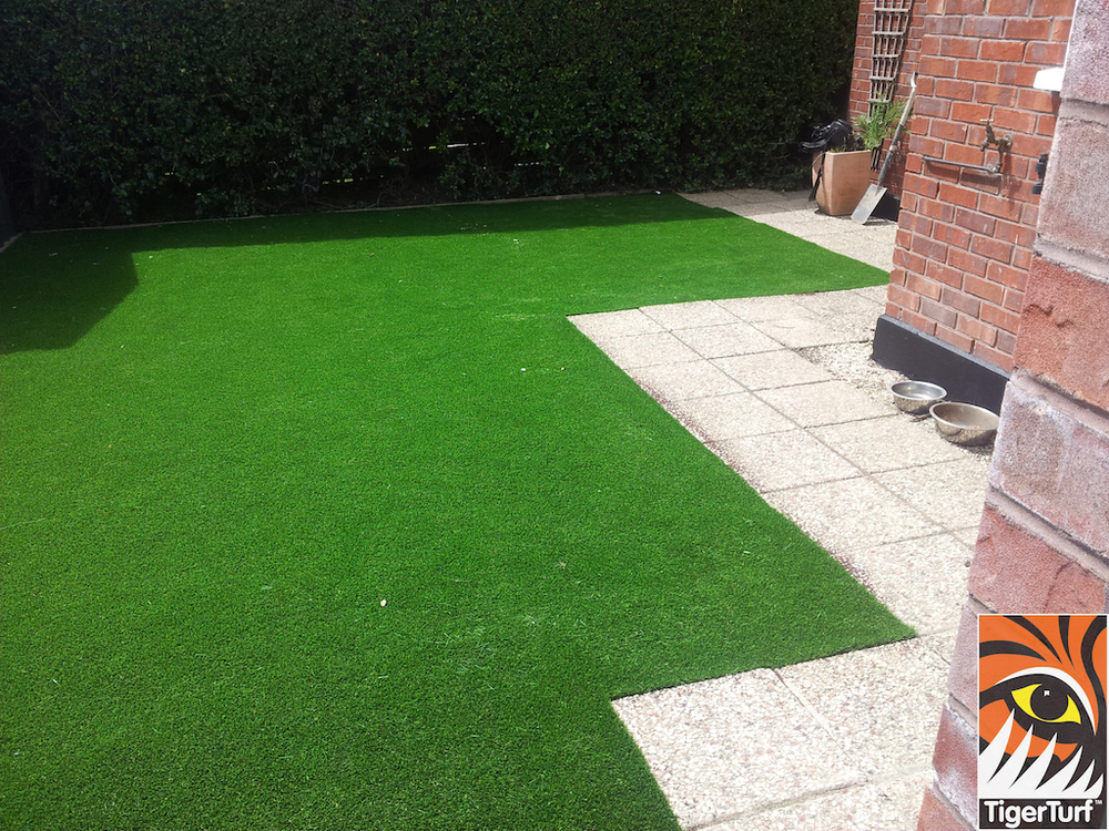 Irish Garden with synthetic grass