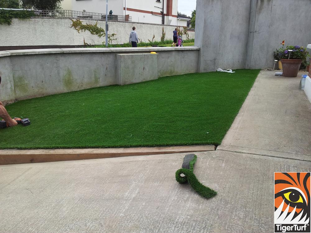 tigerturf lawn turf 824.jpg