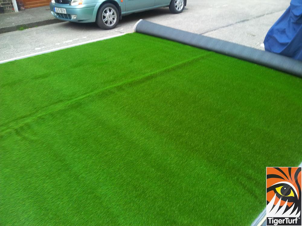unrolling grass
