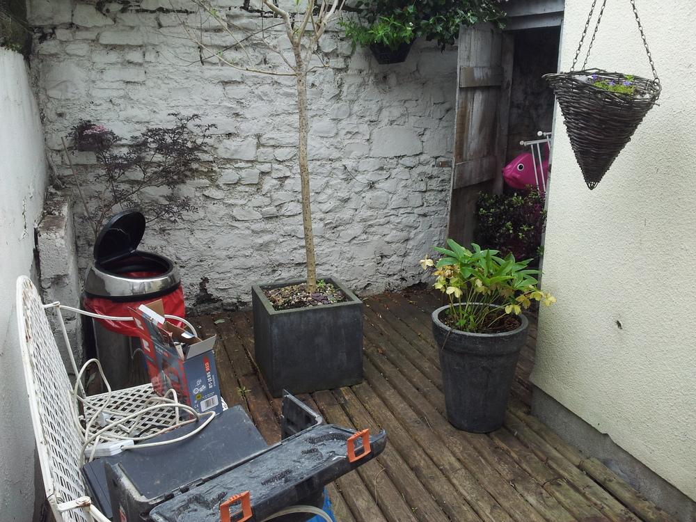 Irish garden