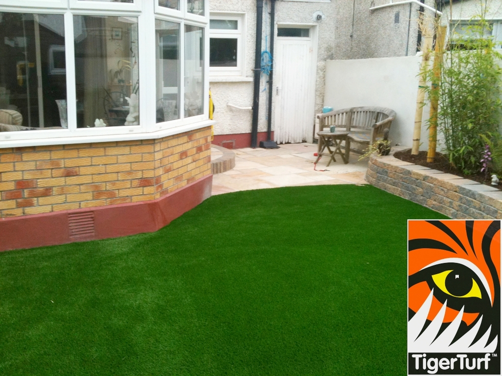 photo of lawn turf after installation