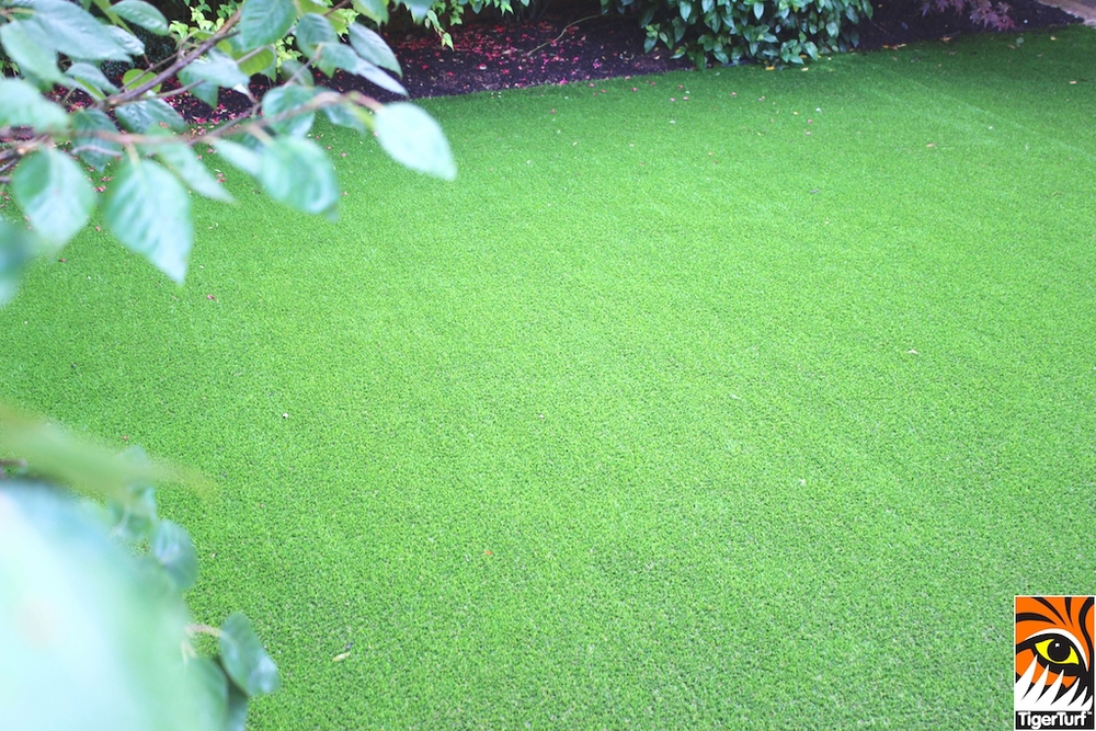 Front Garden lawn in TigerTurf Finesse Deluxe