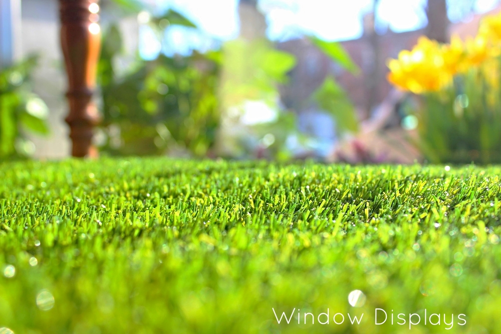window display grass