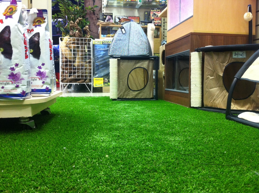 Muts Nuts Pets Shop