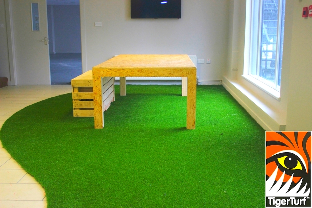 indoor canteen with Tigerturf artificial grass