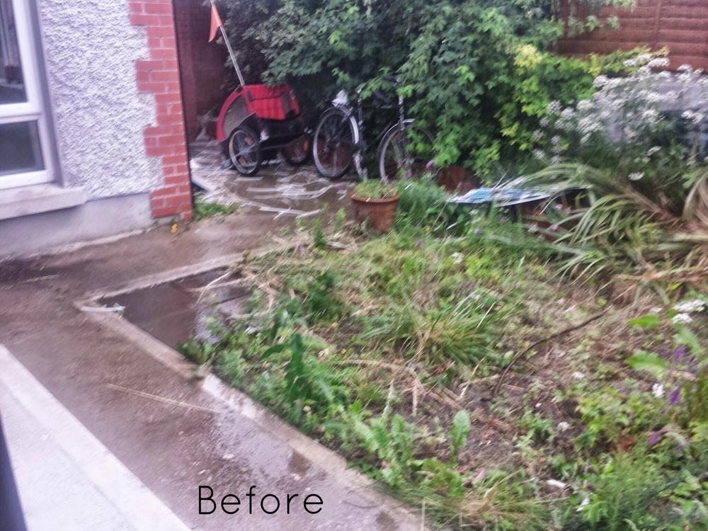 garden prior to landscaping