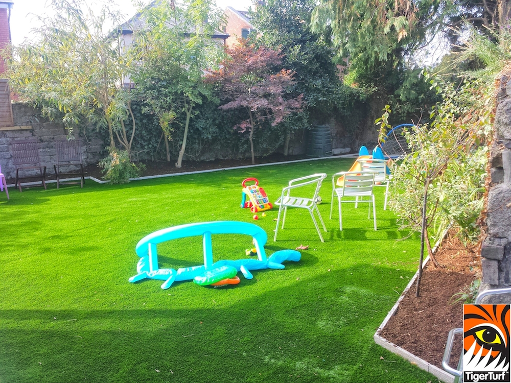Synthetic lawn in Family Garden