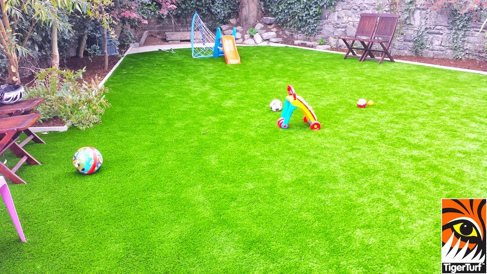 TigerTurf family lawn