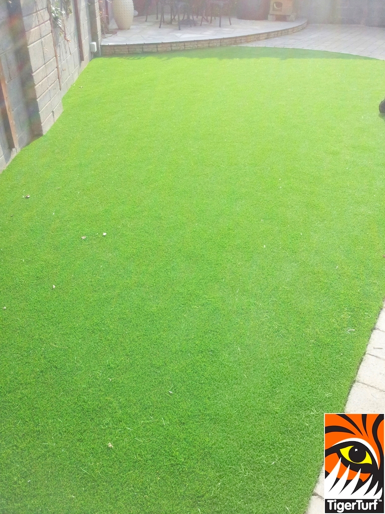 TigerTurf Lawn in Garden