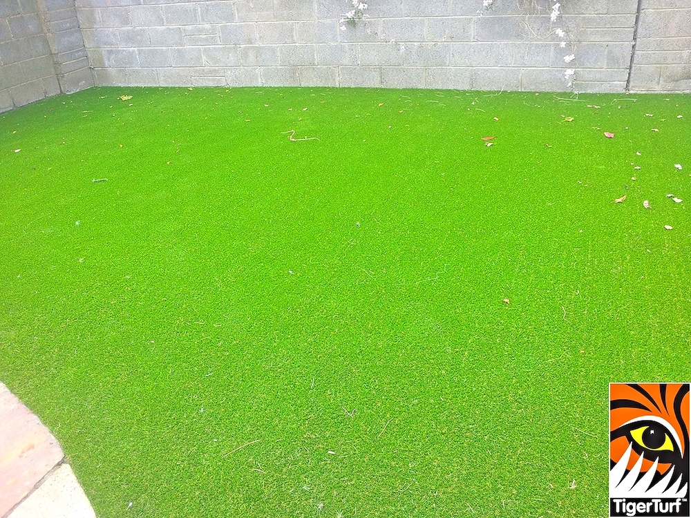 synthetic grass in family garden 18.jpg