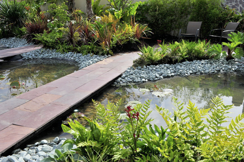 Bloom Rainforest Garden by Amazon Landscaping and Garden Design