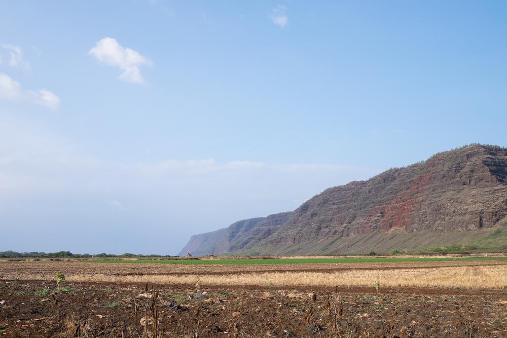 Kauai-187 - Copy.jpg