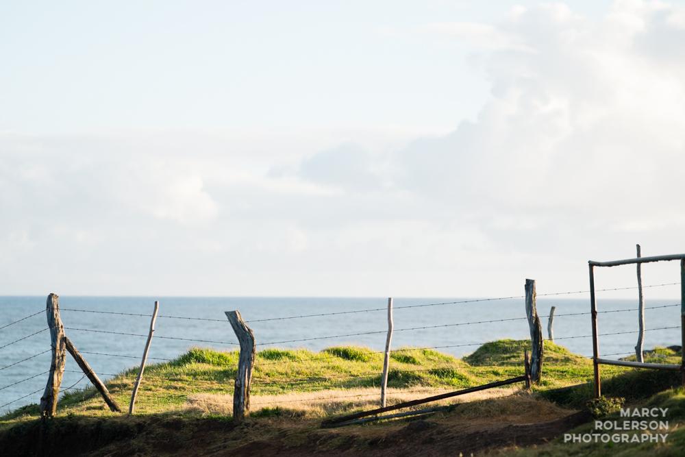 Hawaii_Maui_Paia-54.jpg