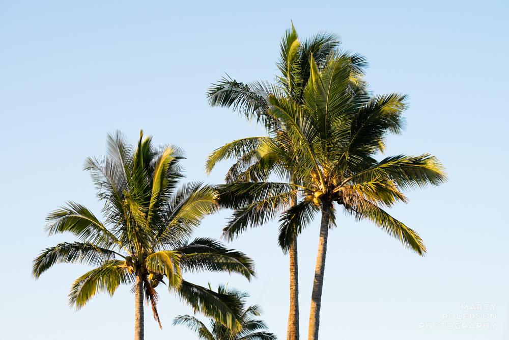 Hawaii_Maui_Paia-6.jpg