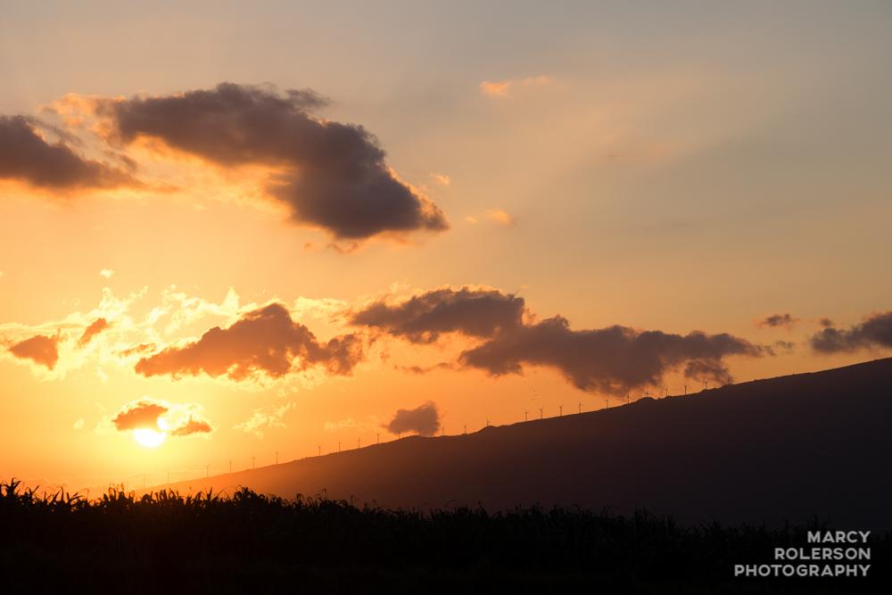 Hawaii_Maui_Paia-105.jpg