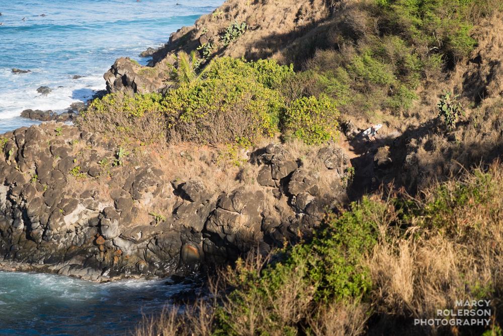 Hawaii_Maui_Paia-109.jpg