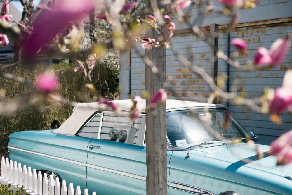 Provincetown-3.jpg