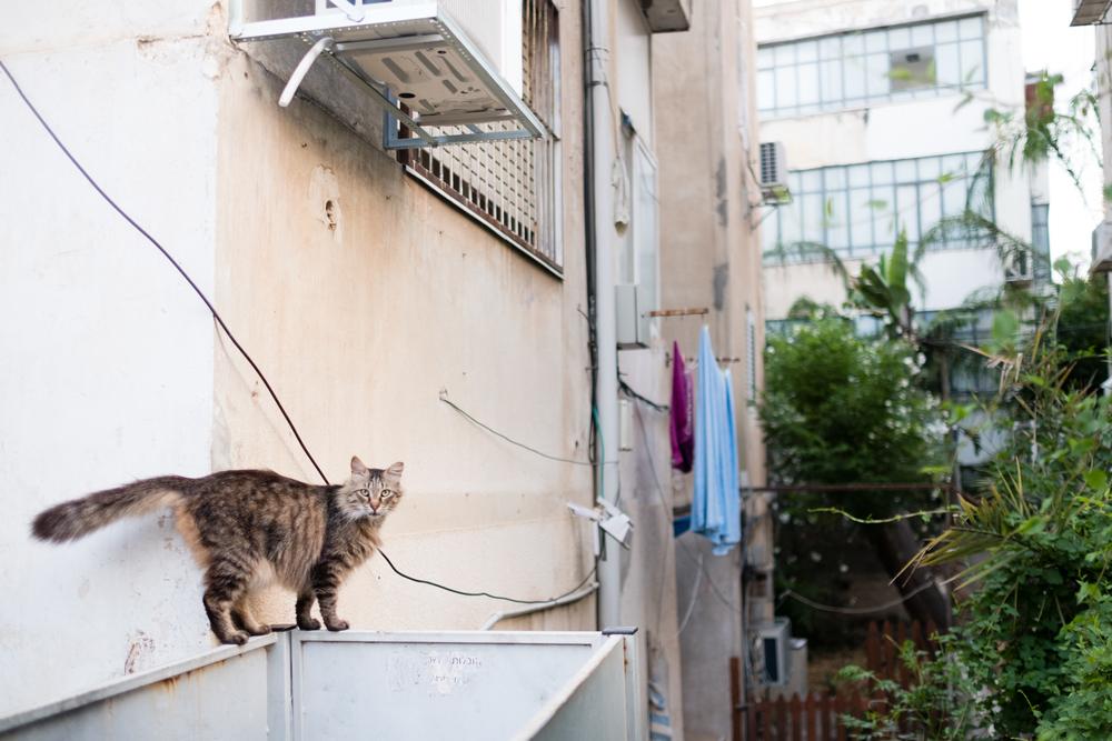 Tel Aviv-11.jpg