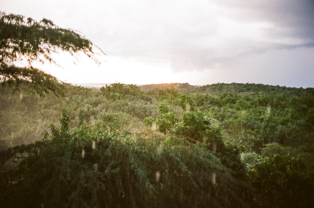 Vieques-4.jpg