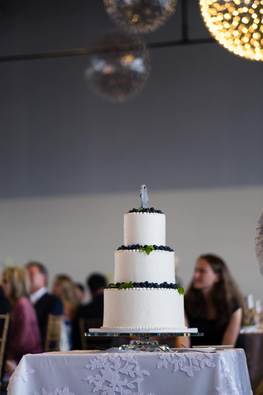 Alia_Ryan_Cliff_House_Maine_Wedding-63.jpg