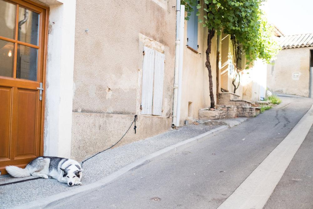 France_July_2017-52.jpg
