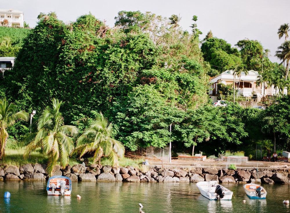 Guadeloupe_2017-35.jpg