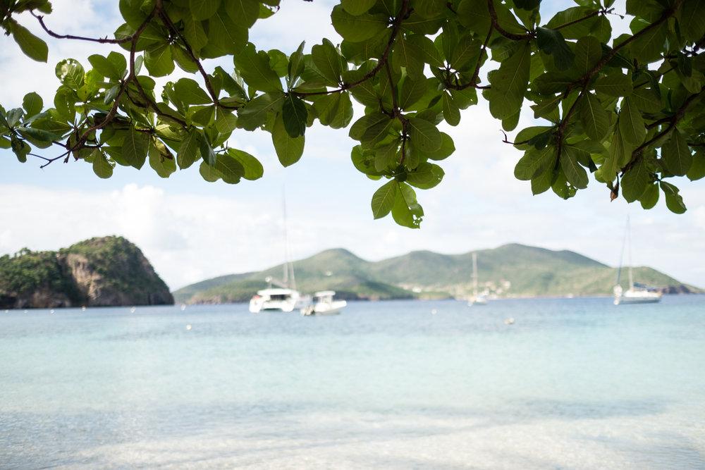 Guadeloupe_2017-47.jpg