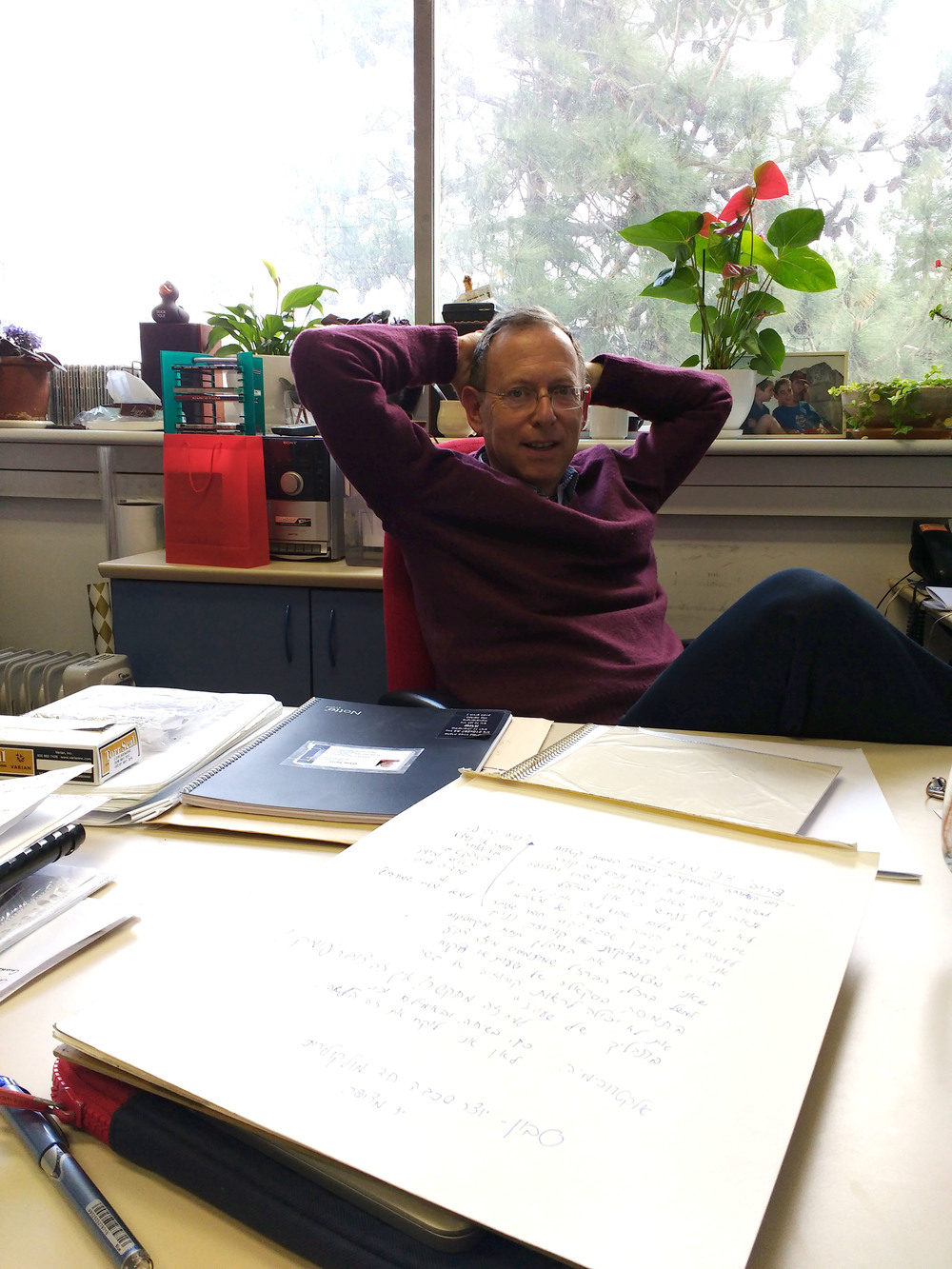 Prof. Mandler at his office