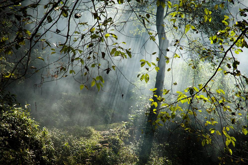 Landscape-JR-001.jpg