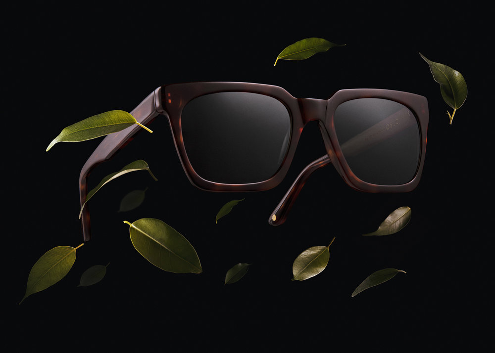 Glasses_2019_brown_B_Print copy.jpg