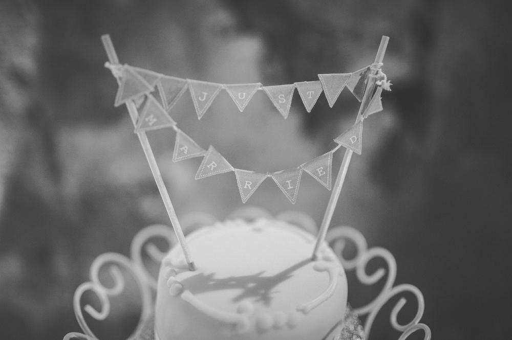 Steve Wood wedding photographer-ROCHESTER-AUG 20151191.JPG