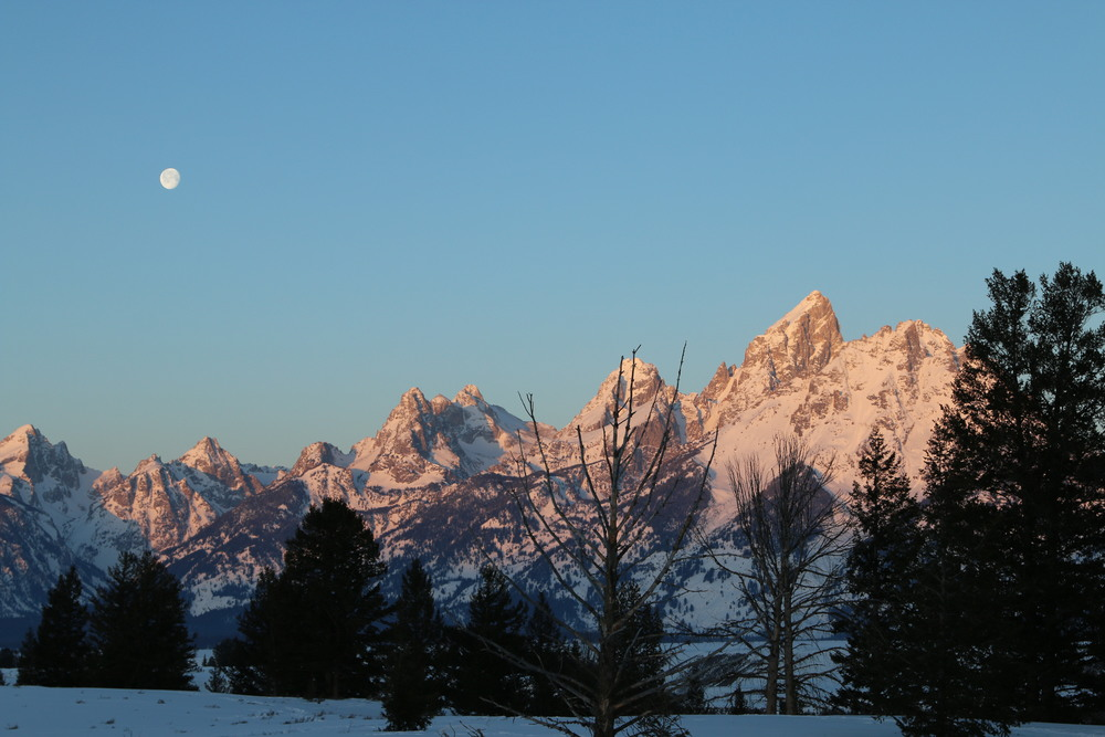 """Sunrise at our """"campsite"""": Snake River Overlook."""