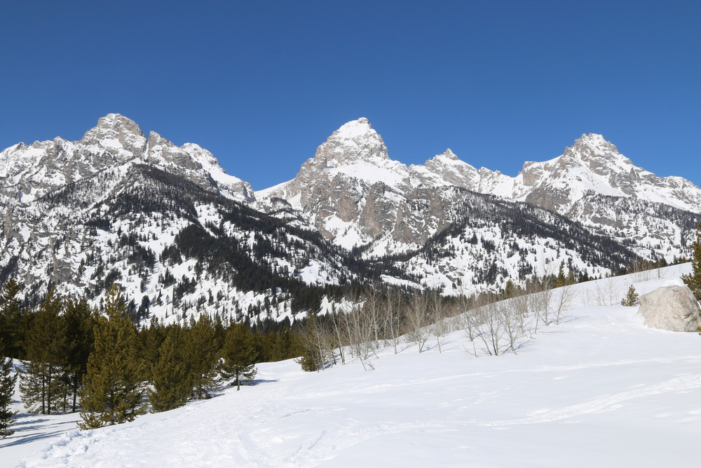 "From this angle it's easier to see why the French trappers referred to the range as ""Les Trois Tetons"""