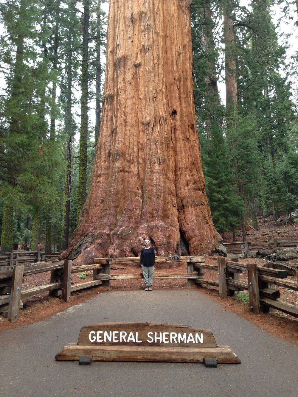 Me with the General; Sequoia National Park, CA