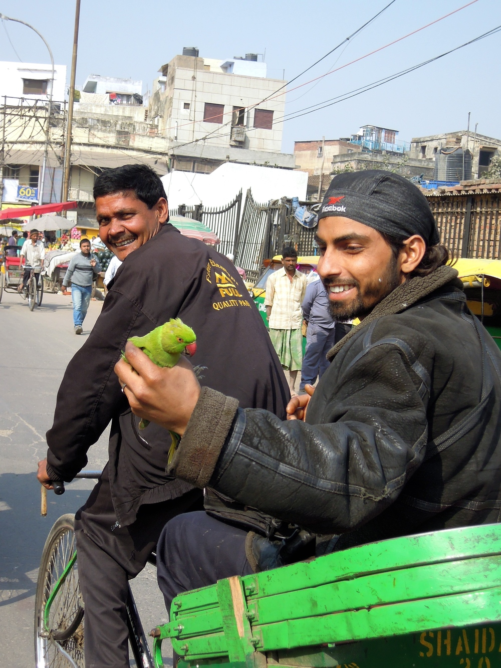 Parrot-a-porter: you can buy almost anything on the streets of Delhi.