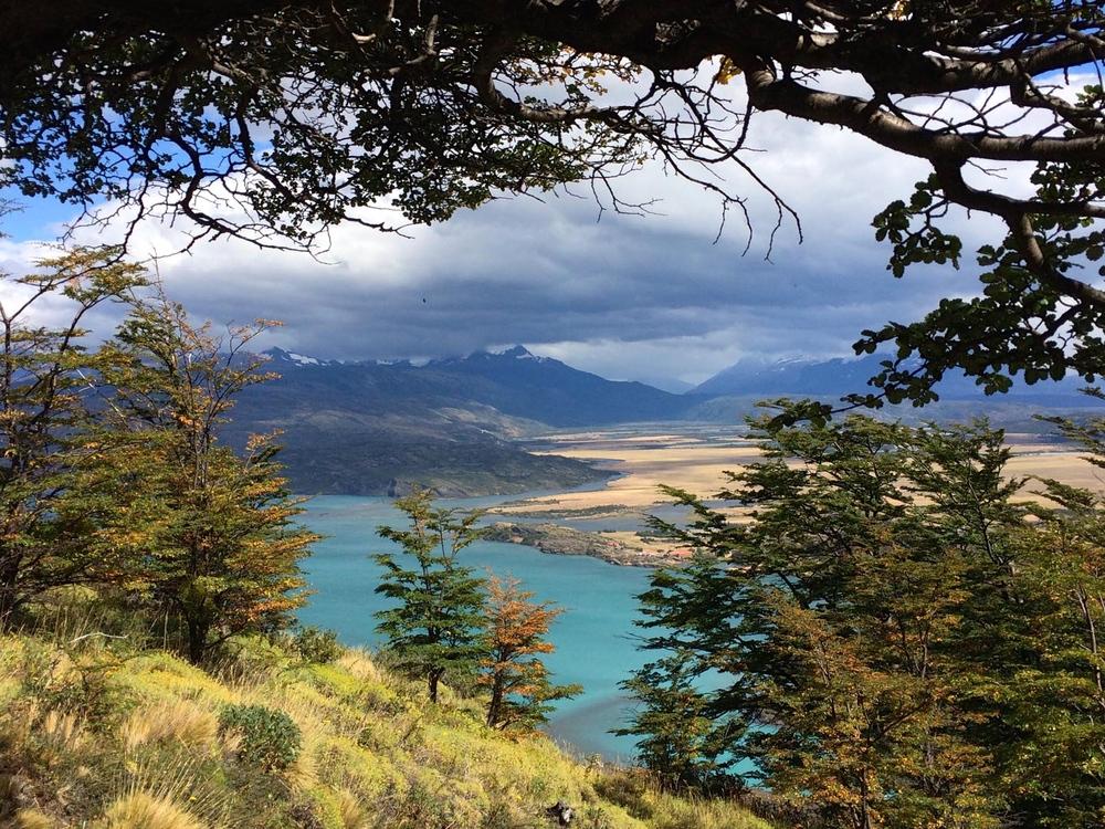 A blue view